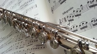 Flute Ringtone best ever: download now for free!