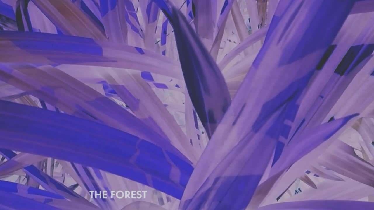 jose-gonzalez-the-forest-lyric-video-jose-gonzalez-official