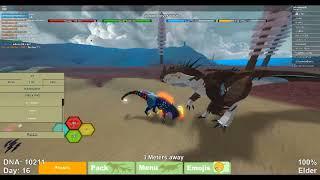 I got kos :c Roblox Dino Simulator