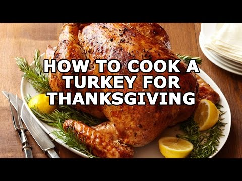 Thanksgiving Turkey Recipes | Christmas Turkey Recipes | How To Cook a Turkey for Thanksgiving
