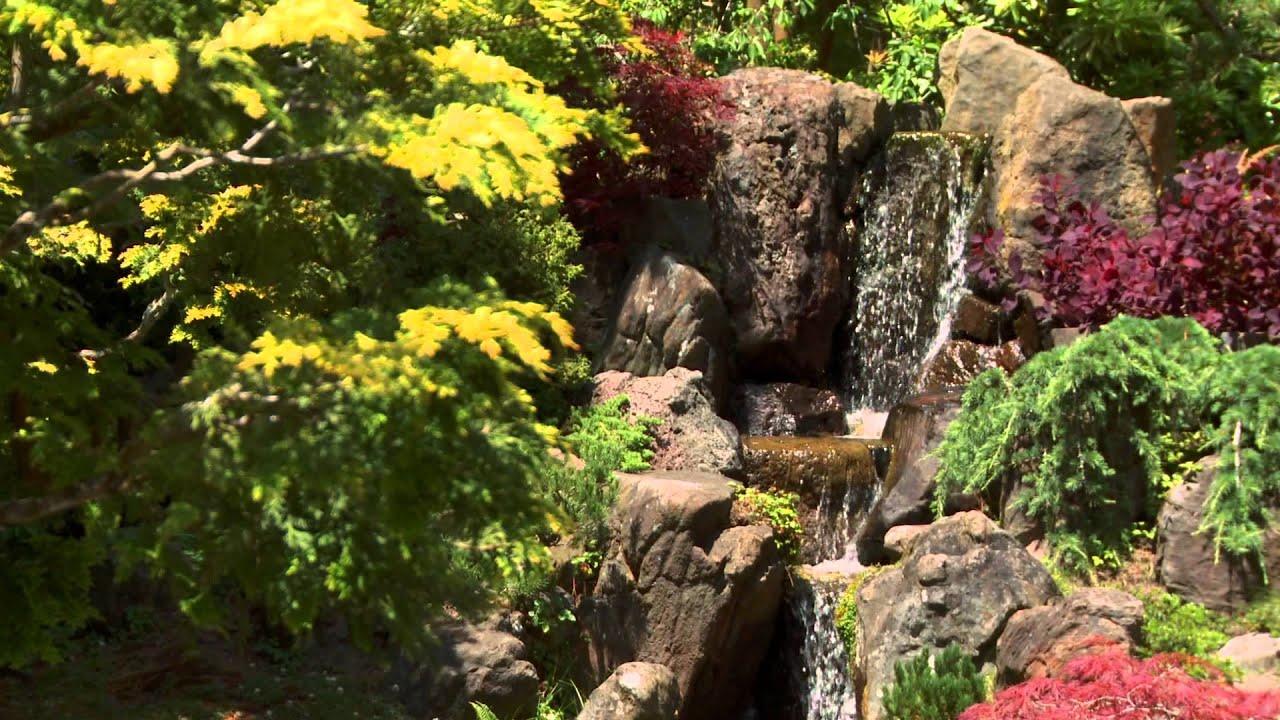 Beste Von Terrarium Wasserfall Selber Bauen Anleitung Ideen