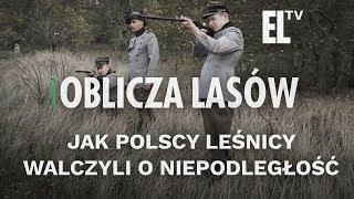 Jak polscy leśnicy walczyli o niepodległość | Oblicza lasów #88