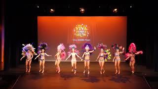 Viva Dance Show - Samba Team thumbnail