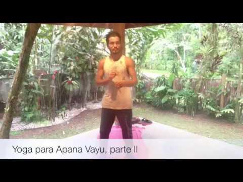 Yoga para Apana Vayu: fortaleça suas pernas II (2º Jay Namaste 02)