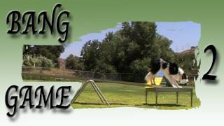 Bang Game: Clicker Dog Agility Training - Using A Table