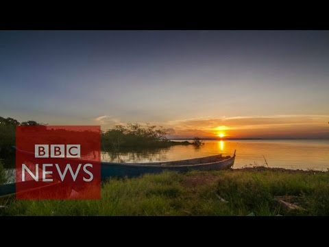 Uganda: How Bugala became home to palm plantations & fishing - BBC News