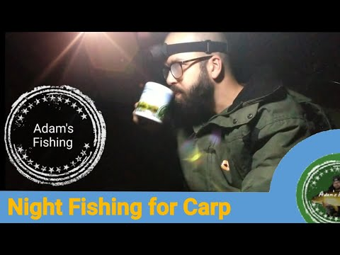 Alone In The Dark - Carp Fishing At Night