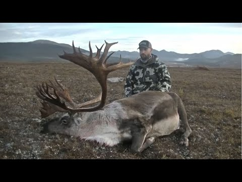 Double Down Alaska Caribou Hunt DIY