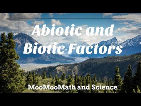 Difference between Abiotic and Biotic Factors