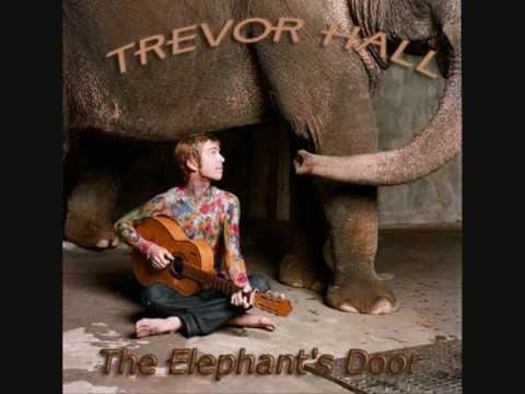 Trevor Hall - All I Can Do - With Lyrics