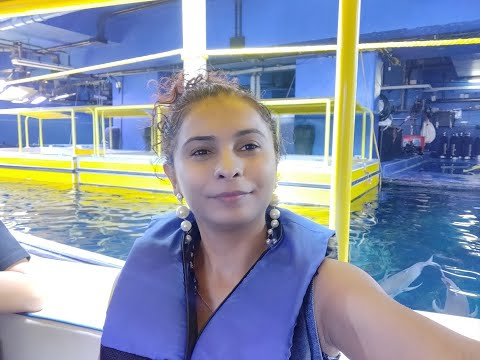"[video] My Visit To ""dubai Aquarium!"" Glass Bottom Boat"