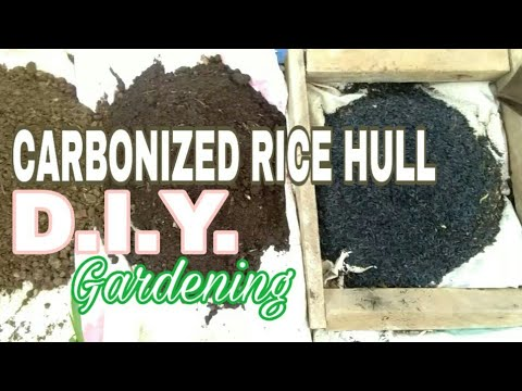 diy:-how-to-make-carbonized-rice-hull