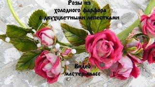 Розы из холодного фарфора с двухцветными лепестками(В данном видео покажу Вам как лепить маленькую кустовую розу с двухцветными лепестка, как лепить листья,..., 2016-07-30T16:05:05.000Z)