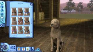 Let's Play The Sims 3: Pets! [Part 2 -- Create a Pet]