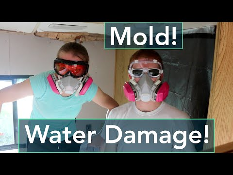 RV Water Damage + Mold Removal