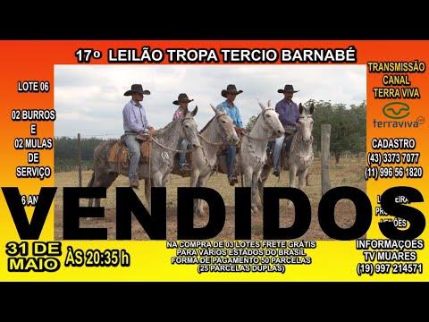 VENDIDOS
