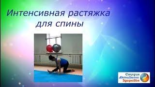 Интенсивная растяжка для  спины / Фитнес дома 40+