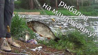 рыбалка на мандавошку не кастинговая сеть cast net fishing