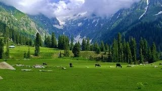 SWAT VALLEY PAKISTAN 2012