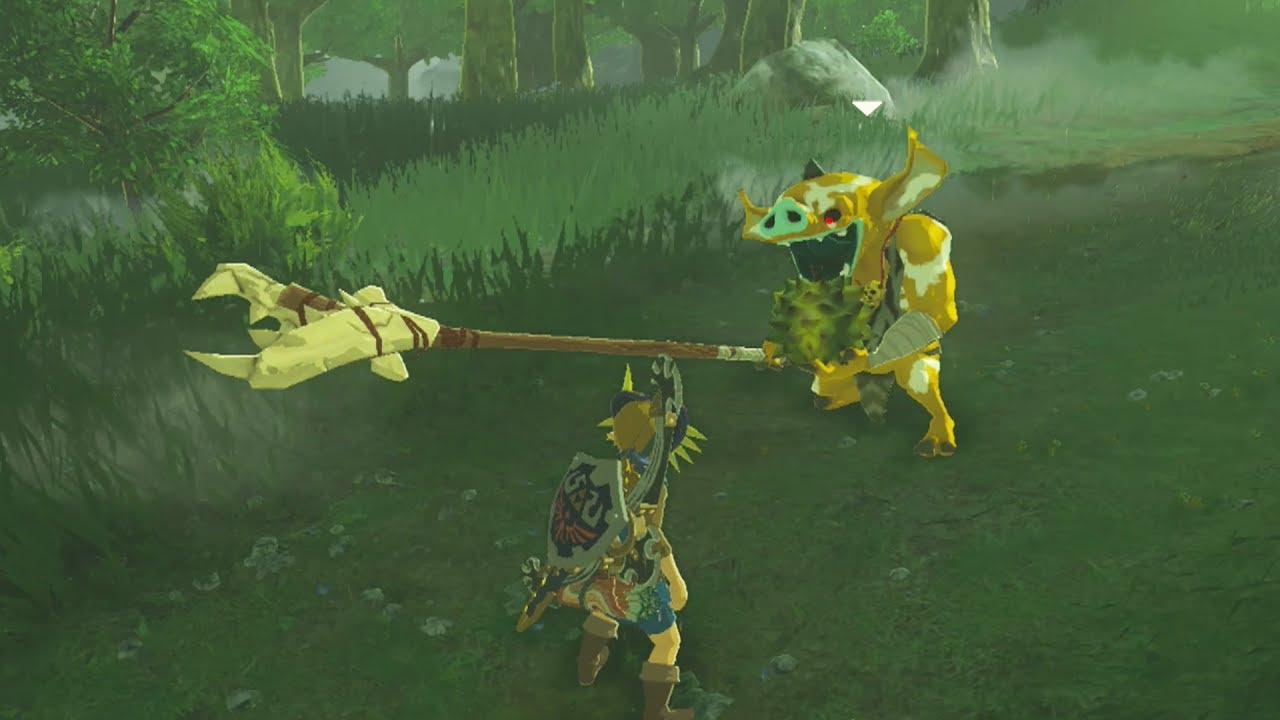 Link Gives A Gold Bokoblin His Last Meal Zelda Breath Of