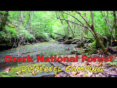 Ozark National Forest Dispersed Camping--Mt Biking--Hiking