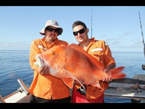 Centurion Fishing Charter With Reefari, Mothershipping The Great Barrier Reef, Day 1!!