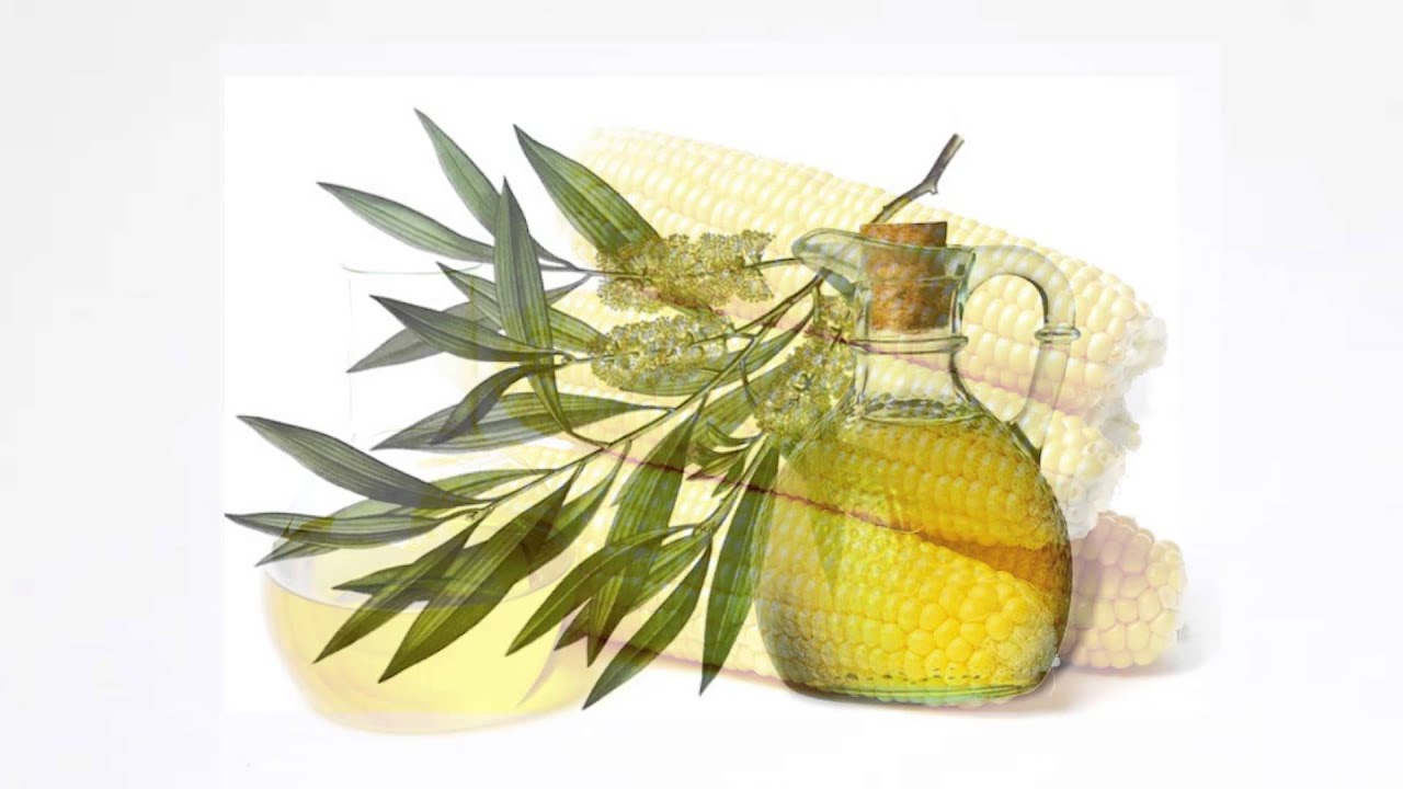 ☆ Масло чайного дерева избавит от грибка лишая, волдырей и ожогов .