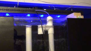 Custom Built Reef Aquarium Tank 240 Gallons -- Update 2