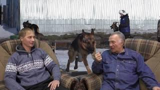 Человек и собака   2 выпуск