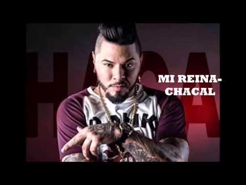 MI REINA- CHACAL (AUDIO)
