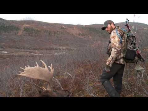 Dropped: Project Yukon 390 Yard Moose Kill with Vortek Ultralight LDR