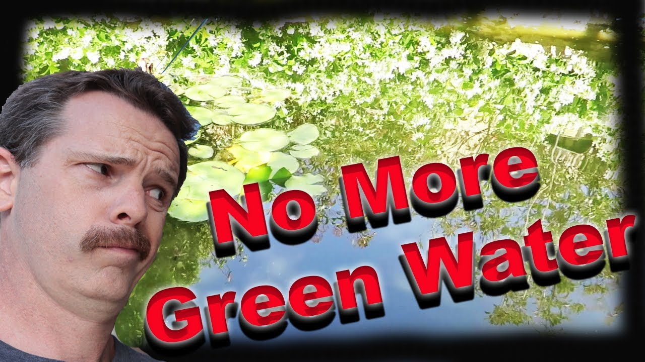 No more green pond water build a pre filter youtube for Keeping ponds clean without filter