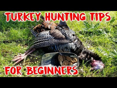 Turkey Hunting Tips For Beginners | Hunting Boot Camp