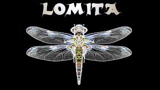 Lomita - Zwischen Raum und Zeit