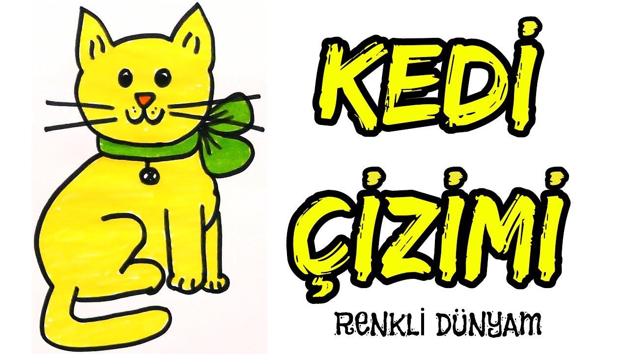 Kedi Nasil Cizilir Kedi Cizimi How To Draw A Cat Renkli Dunyam
