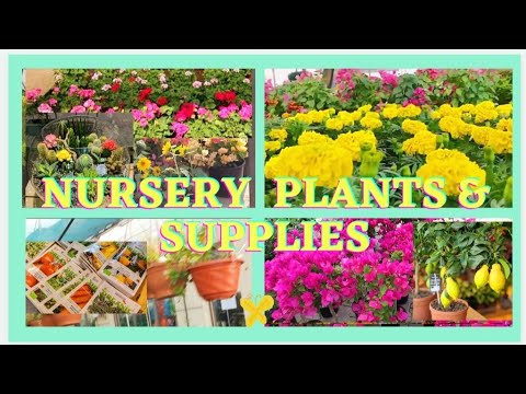 home and gardening supplies