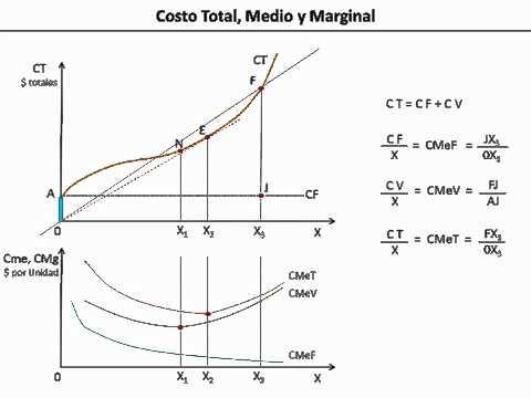 Introducci n a la econom a clase 23 costo total medio for Costo medio del soffitto a cassettoni