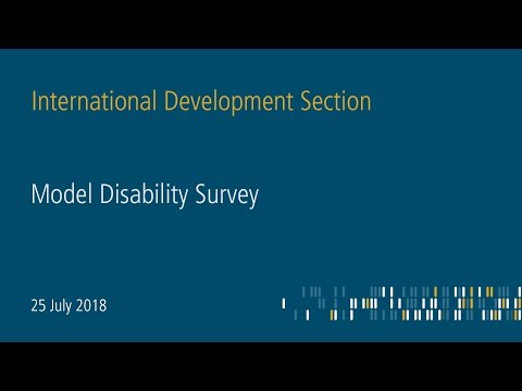 Model Disability Survey - Making disability visible in statistics (Part 1)