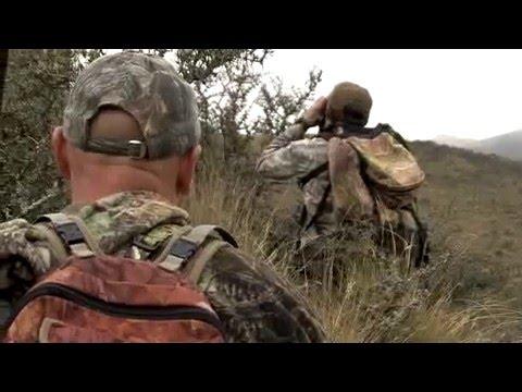 Four Seasons Safaris New Zealand | Stealth Films New Zealand