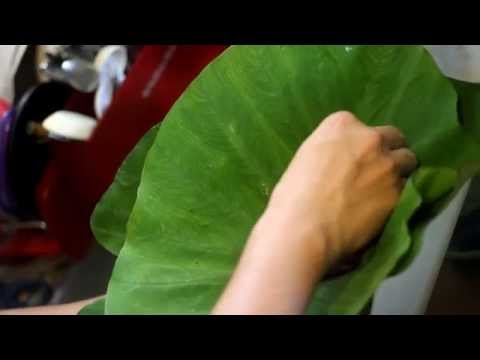Hawaiian Pork Lau Lau Recipe