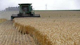 Trump's efforts to renegotiate NAFTA concerning farmers
