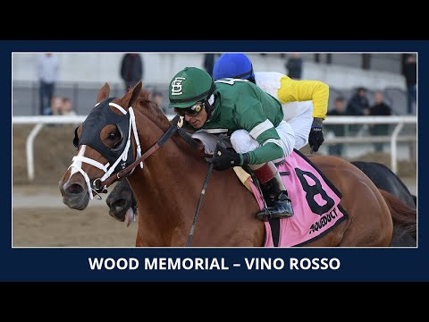 Vino Rosso - 2018 - Wood Memorial presented by NYRA Bets