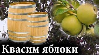 Как квасить яблоки или ЗАКВАСКА ЯБЛОК на зиму