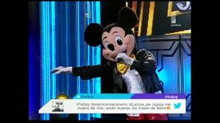 Katia a Mickey Mouse: cuál es la diferencia entre una rata y un ratón