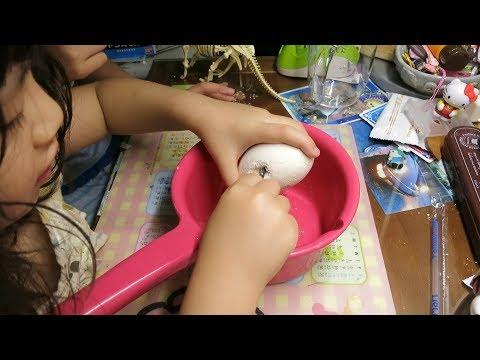 寶貝日記(玩玩具挖恐龍化石)MVI 2836