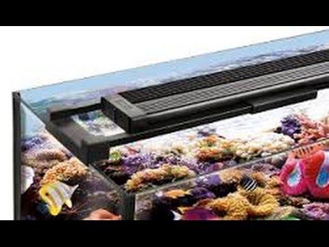 fluval sea marine reef performance led lighting