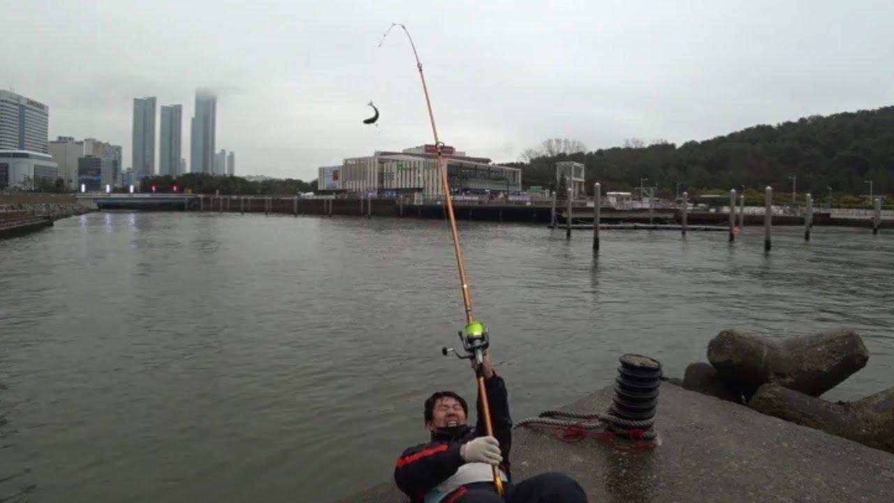 예술 훌치기 낚시 회먹방 World's Best Art Fishing