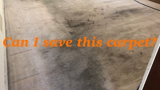 Advanced Cleaning Vlog # 17 || Heavily soiled living room carpet cleaning
