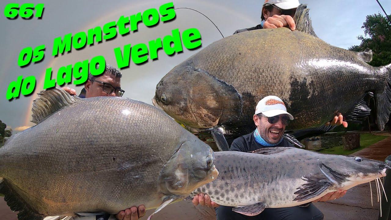 Pescaria 200% Estilo Goiano com os Tambas Gigantes do Lago Verde - Programa Fishingtur na TV 661