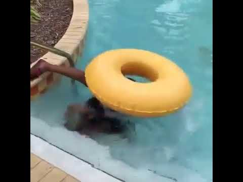 Fully Clothed Underwater Fight in the Pool from YouTube · Duration:  1 minutes 45 seconds